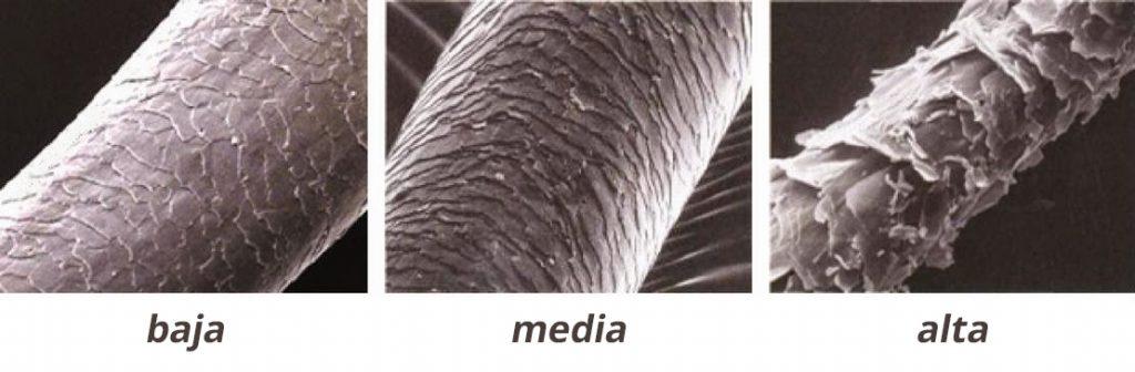 tres tipos de porosidad del cabello